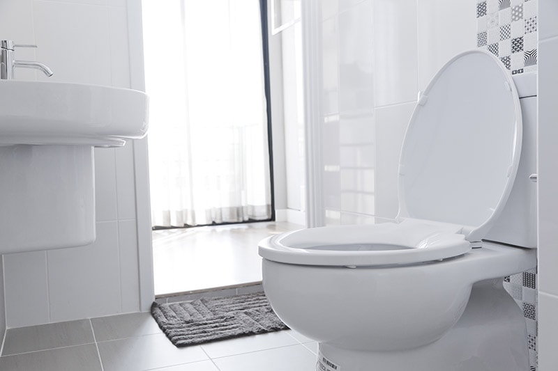 White toilet with water closet look outside